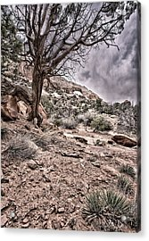 This Is Utah No. 9 - Morning At Williams Arch Acrylic Print by Paul W Sharpe Aka Wizard of Wonders