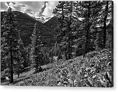 This Is Washington State No.1b - Klipchuck Acrylic Print by Paul W Sharpe Aka Wizard of Wonders