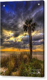 This Is Your Spot Acrylic Print by Marvin Spates