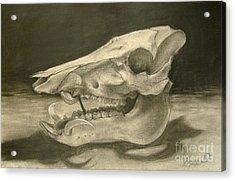 This Little Piggy Acrylic Print by Julianna Ziegler