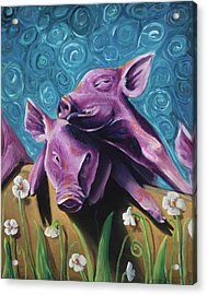 This Little Piggy Acrylic Print by Julie Fernandez