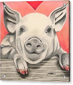 This Little Piggy... Acrylic Print by Michelle Hayden-Marsan