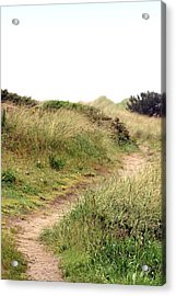 This Way To The Beach Acrylic Print by Joseph Skompski