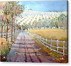 This Way To The Vineyard Acrylic Print by Joyce Hicks