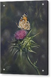 Thistle Dew Acrylic Print by Kathleen  Hill