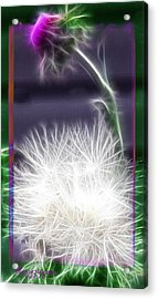 Acrylic Print featuring the photograph Thistle by EricaMaxine  Price