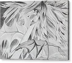 Thistle Acrylic Print by Stella Sherman