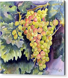 Thompson Grapes Acrylic Print