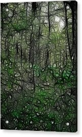 Thoreau Woods Fractal Acrylic Print by Lawrence Christopher
