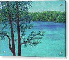 Thoreau's View Acrylic Print