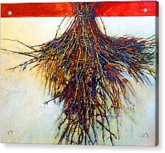 Thorn Zia Acrylic Print by Dale  Witherow