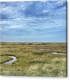 Thornham Marshes, Norfolk Acrylic Print