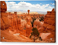 Thors Hammer Acrylic Print by Jane Rix