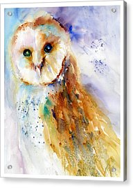 Thoughtful Barn Owl Acrylic Print by Christy Lemp