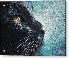 Thoughtful Cat Acrylic Print by Elena Kolotusha