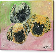 Acrylic Print featuring the painting Three Amigos by Ania M Milo