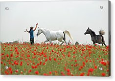 Three At The Poppies' Field Acrylic Print