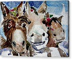 Three Christmas Donkeys Acrylic Print