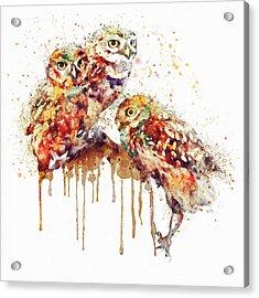 Three Cute Owls Watercolor Acrylic Print by Marian Voicu