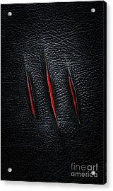 Three Cuts Acrylic Print by Carlos Caetano