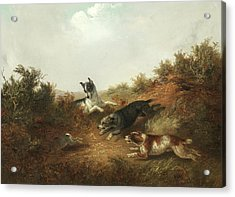 Three Dogs Chasing A Rabbit Down A Hole Acrylic Print