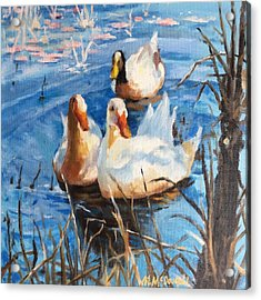 Three Ducks Acrylic Print