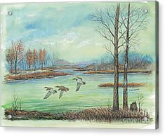 Three Ducks On A Blue Day Acrylic Print by Samuel Showman