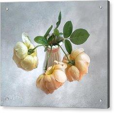 Three English Roses Acrylic Print by Louise Kumpf