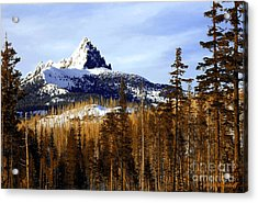 Three Fingered Jack Acrylic Print