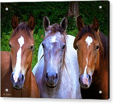 Three Friends Acrylic Print