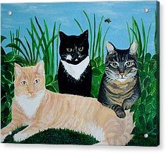 Three Furry Friends Acrylic Print by Elizabeth Robinette Tyndall