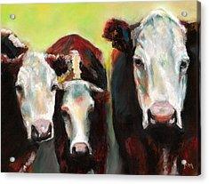 Three Generations Of Moo Acrylic Print