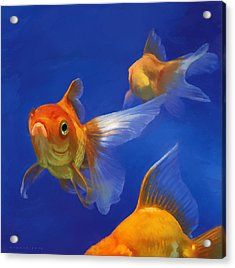 Three Goldfish Acrylic Print