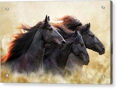 Three Horse Power Acrylic Print