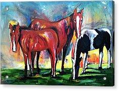 Three Horses Sunny Day Acrylic Print