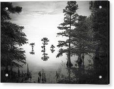 Three Little Brothers Acrylic Print by Eduard Moldoveanu