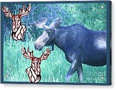 Three Moose Acrylic Print