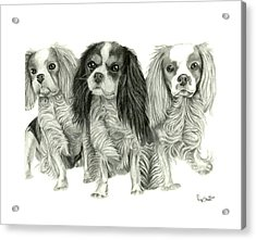 Three Musketeers Acrylic Print