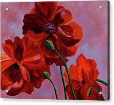 Three Oriental Poppies Acrylic Print