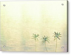 Three Palms In Color Acrylic Print