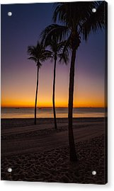 Three Palms Acrylic Print