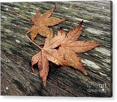 Acrylic Print featuring the photograph Three by Peggy Hughes