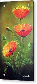 Three Poppies Acrylic Print by Silvia Philippsohn