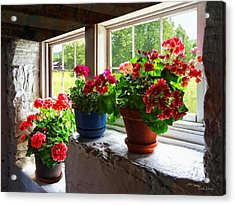 Three Pots Of Geraniums On Windowsill Acrylic Print