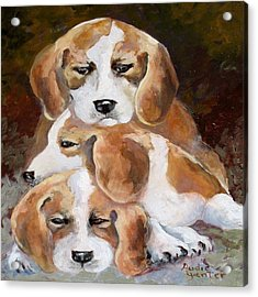 Three Puppies Acrylic Print by Audie Yenter