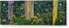 Three Rainbows Acrylic Print
