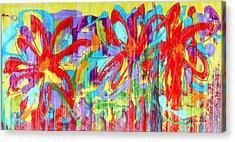 Three Reds Acrylic Print by Pauline Ross
