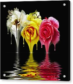 Tears Of Roses Acrylic Print by Gordon Engebretson