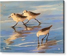 Three Sandpipers Acrylic Print by Tina Obrien