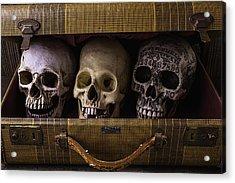 Three Skulls In Suitcase Acrylic Print by Garry Gay
